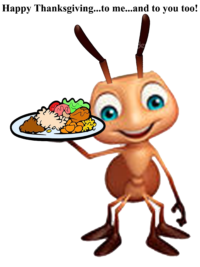 ant control eugene oregon pest control