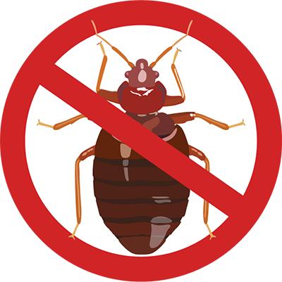 Eugene Carpet Beetle Control - exterminator