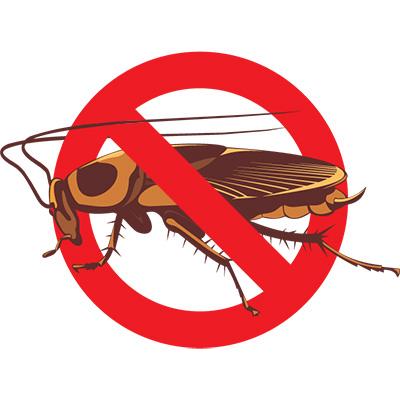 Eugene cockroach control company - Art
