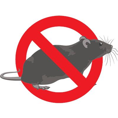 Eugene Rat Control - Exterminator