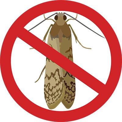 Eugene Moth Control Company - Moth Art