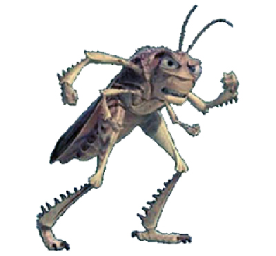 Eugene oregon pest control experts - cockroaches