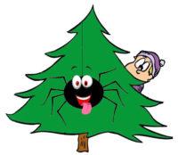 Eugene oregon pest control - Spider tree