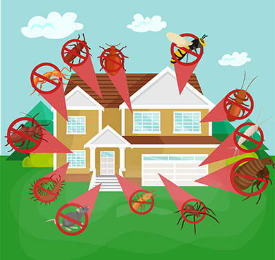 Pest Control Eugene - Total Pest Control